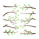 Collection of Tree Branch Silhouettes Prints by Pink Pueblo