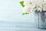 Bouquet of White Lilacs Photographic Print by Anna-Mari West