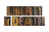 Liberty or Death Poster by  enterlinedesign