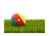 Football with Flag of Cameroon Prints by Mikhail Mishchenko