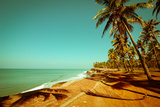 Beautiful Sunny Day at Tropical Beach with Palm Trees, Ocean Landscape in Vintage Style, India Posters by Im Perfect Lazybones