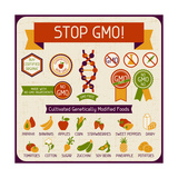 Information Poster Stop GMO! Poster by  incomible