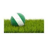 Football with Flag of Nigeria Plakater af Mikhail Mishchenko