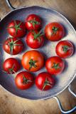 daughter - Rustic Tomatoes Fotografická reprodukce