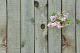 Lilac Through a Fence Photographic Print by Henry Steven