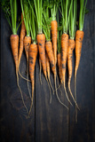 Carrots Photographic Print by  Bozena_Fulawka