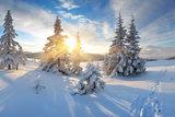 Frosty Morning in the Mountains, Panorama of Winter Mountains, Ukraine, Carpathians Photographic Print by  Kotenko
