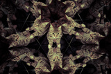 Common Cat Inside a Kaleidoscope, Mirrors Posters by  outsiderzone