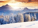 Fantastic Evening Winter Landscape Print by Leonid Tit