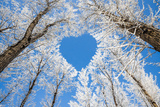 Winter Landscape,Branches Form a Heart-Shaped Pattern Prints by  06photo