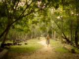 Young Woman Walking on Path into Enchanted Forest Reprodukcja zdjęcia autor R.M. Nunes
