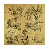 Tiere Poster von  KUCO