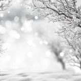 Winter Background Photographic Print by  lilkar