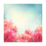 Shining Flowers Roses (Peonies) Background Premium Giclee Print by  kostins
