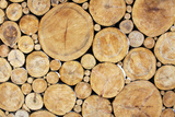 Stacked Logs Background Photographic Print by  wasja