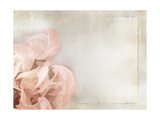 Flower Background in Light Vintage Style on Torn Old Paper Sheet Prints by  one AND only