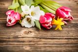 grafvision - Spring Flowers - Fotografik Baskı