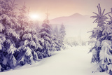 Fantastic Evening Winter Landscape Prints by Leonid Tit
