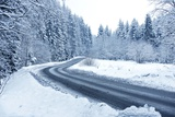 Winter Forest Road Photographic Print by  duallogic