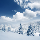 Beautiful Winter Landscape with Snow Covered Trees Photographic Print by Leonid Tit