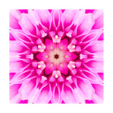 Pink Concentric Flower Center: Mandala Kaleidoscopic Poster by  tr3gi