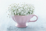 Pink Cup with White Flowers Prints by Anna-Mari West