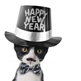 Cute Black and White Kitten with Moustache, Bow Tie and Happy New Year Hat Posters by  Hannamariah