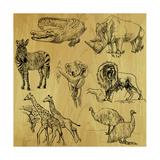 Tiere Kunstdrucke von  KUCO