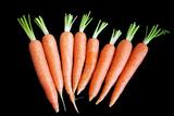Carrot Prints by  KGM
