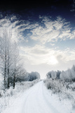 Winter Road and Forest Photographic Print by  Elenamiv