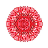 Red Daisy Mandala Flower Kaleidoscopic Art by  tr3gi