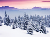 Fantastic Evening Winter Landscape Photographic Print by Leonid Tit