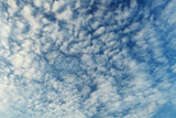 Altocumulus Clouds - Natural Beauty Contrast Background Photographic Print by  pzAxe