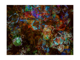 Multicolored Kaleidoscope Abstract Background Print by  Zurbagan