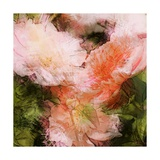 Art Vintage Floral Blurred Background with Pink Peonies in Garden Posters by Irina QQQ