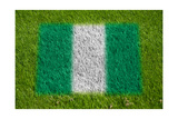 Flag of Nigeria on Grass Posters af raphtong