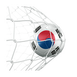 South Korean Soccer Ball in a Net Premium Giclee Print by  zentilia