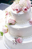 Three Tier Cake with Pink Roses Photo by  chughes