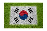 Flag of Korea on Grass Art by  raphtong
