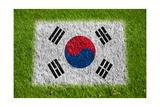Flag of Korea on Grass Art by  raphtong