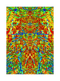A Multicolored Kaleidoscopic Tapestry Art by  Ray2012