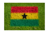 Flag of Ghana on Grass Plakater af raphtong