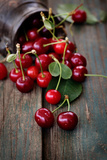 Fresh Cherries Photographic Print by  mythja