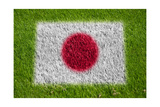 Flag of Japan on Grass Posters by  raphtong