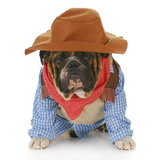 Dog Dressed Up Like a Cowboy Print by Willee Cole