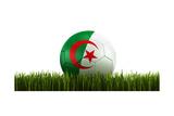 Algerian Soccerball Lying in Grass Giclee-tryk i høj kvalitet af  zentilia