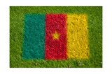 Flag of Cameroon on Grass Print by  raphtong