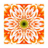 Orange Concentric Flower Center: Mandala Kaleidoscopic Design Posters by  tr3gi
