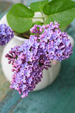 Lovely Lilac in the Vintage Vase Photographic Print by  JulietPhotography