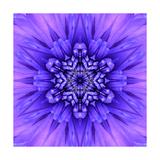Blue Concentric Flower Center: Mandala Kaleidoscopic Premium Giclee Print by  tr3gi